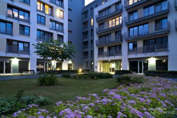 Inwestycje LC Corp - ogród przed budynkiem.