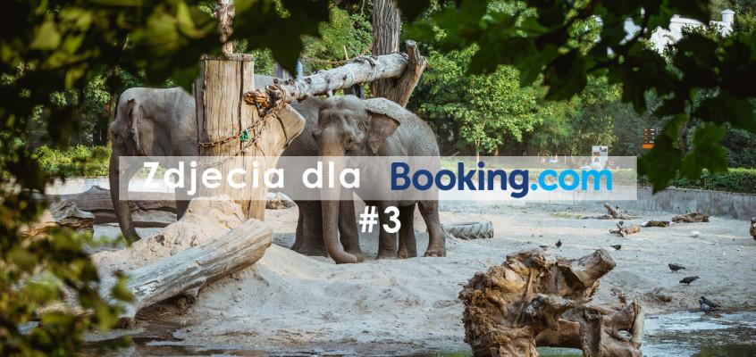 Zdjęcia dla booking.com #3 – Wrocław