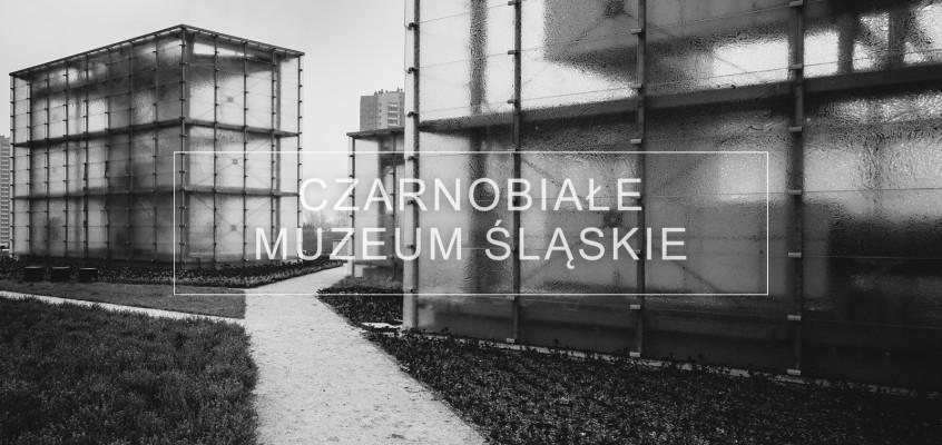 Zdjęcia architektury Muzeum Śląskie